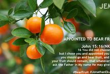 Declare / Preaching Christ, Transforming Lives!