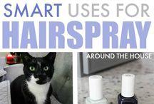 pet hair & hair spray