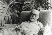 Matisse fashion