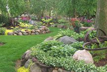 Gardening and Landscaping / by Cherie Haynes