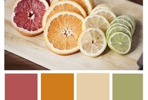 Cool Color Combos / Colors and palettes that complement each other.