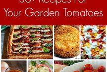 taste tomato recipes