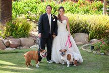 Vintage Ranch Wedding in Santa Barbara