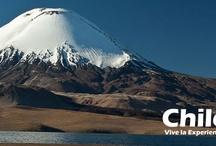 Volcan Villarica / El volcán Villarrica (Rucapillán en idioma mapuche, 'casa del espíritu' o 'del demonio') es un volcán de Chile, ubicado en los Andes meridionales. Es uno de los más activos de Sudamérica.  http://www.chileviaje.com/