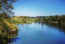 Albany, Oregon / Places in Albany Oregon