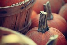 .: autumn :. / by Julie Jones Chewning | Olive + Rye