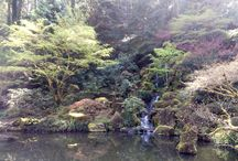 Tanooki travels the world ~Japanese garden in Portland, OR / Breath taking scenery in Portland Japanese garden, OR.  Access: 611 SW Kingston Ave. Portland, Oregon 97205 Price: $14.95 Parking: Meter or free parking! Be ready to hunt for just single spot!!