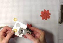 SU!: Gift Packaging