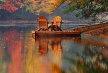 Autumn - Sonbahar / Tüm güzellikleriyle dökülen yapraklar ve sarı sonbahar...