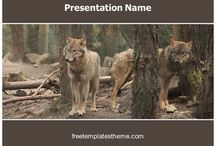 Free Wildlife Animals PowerPoint PPT Templates / This board of #free #Wildlife #Animals #powerpoint #ppt #templates has wide variety of #ppt #designs for you upcoming #Wildlife #Animals #powerpoint #presentation.