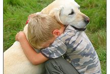Dogs.... / Inspiration from our beloved dogs... / by Jeannie Sommers