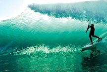 Surfing / Surfing. One of my favourite hobbies. I hate swimming but I love surfing