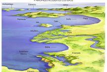 las formas de el relieve marino y costero / mi tablero es del relieve marino y voy a a subir imagenes que os mostraran como es.