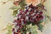 Frutas y Verduras para la Eternidad