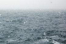 >>> Ocean <<<