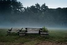 Favorite Places & Spaces / by Katie Adams