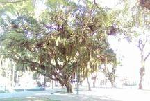 Nova Iguaçu. RJ / lugares de Nova Iguaçu