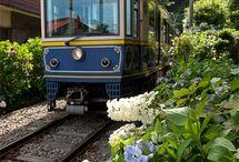 Train Train♪