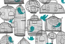 Birds -gaiola