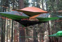 hamm tree camping