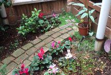 Mas jardines