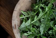 Foraging and Wild Foods / by Nourished Kitchen