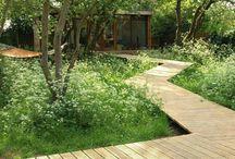 divoká zahrada