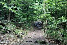 INDIANHEAD-TWIN-SUGARLOAF MOUNTAINS (CATSKILLS, NEW YORK) / Pictures from my hike on 7-7-13.