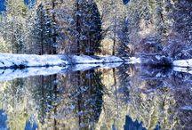 Winter Wonders / by Paulie Ellen Killgore