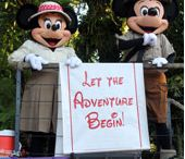 Disney-Where Dreams Come True
