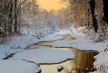 Natura iarna