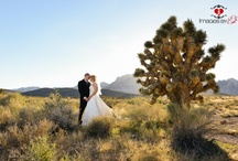 Las Vegas Wedding / Everything you could possibly want for a Las Vegas Theme Wedding or Party!