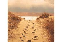 Beach? Yes Please! / by Sherry McReynolds