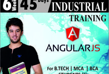 Industrial Training for IT programs