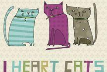 CATS * GATICOS