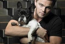 Celebs and their pets / Vintage and current celebrities and their beloved pets