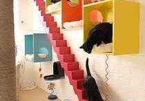 Cat room - lower level