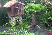 Töpfersachen Aquarium