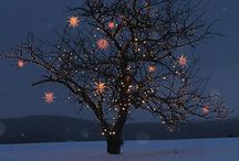 Christmas Lights Oh La La