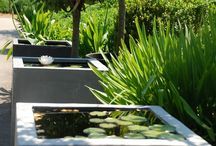 Inspiration || Garden