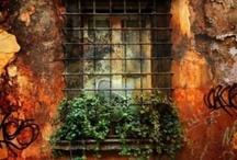 Windows / by Linda Alexander