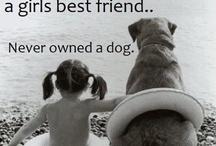 A Girls Best Friend / Fluffy Furry Cute Little Critters | Heart Melters | Lifelong Companions | Animal Lovers <3
