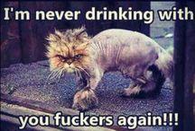 Hahahaha!!! Funny