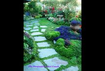 Garden area & Flowers / by Anjanette Pilat