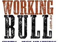 Working Bull Podcast