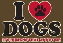 So TRUE / Yep, So TRUE! / by Pam's Dog Academy
