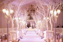 Winter Wonderland Wedding / by Lauren P