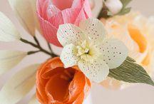 Flores de maiz