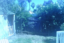 Backyard Corner / HELP! Two trees have recently been cut down from this corner, so it now looks...well, like the cover of this board.  I need some ideas for relaxation and privacy. / by Rosa Varela