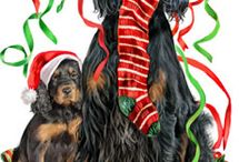 Karácsonyi kutyusok